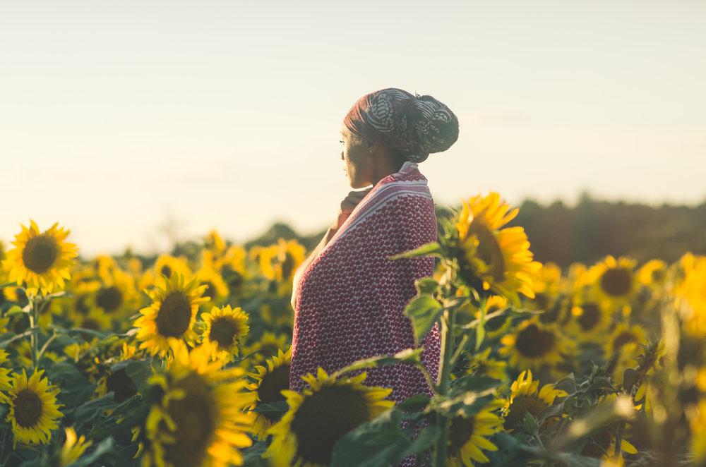 Sunflower-68.jpg