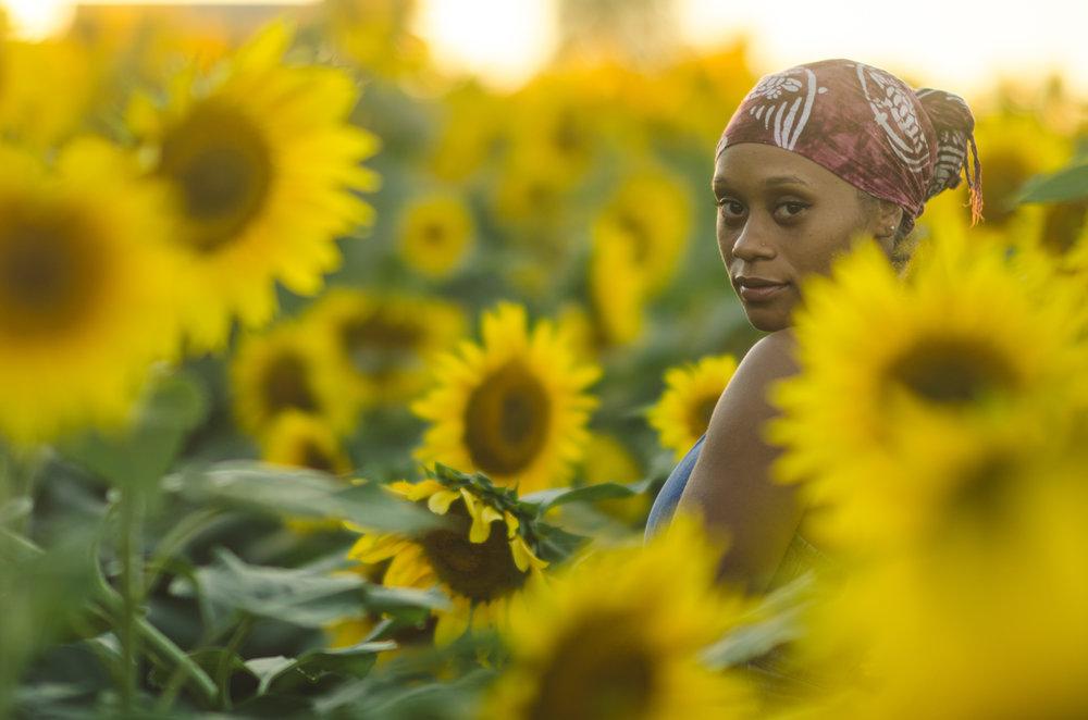Sunflower-78.jpg