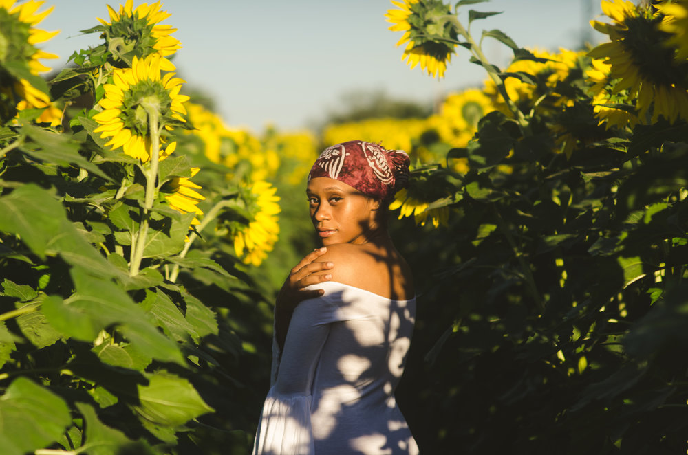 Sunflower-24.jpg