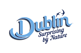 Dublin_Surprising.png