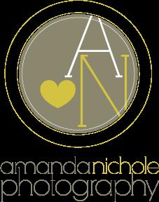 amanda nichole logo_1349229538.png
