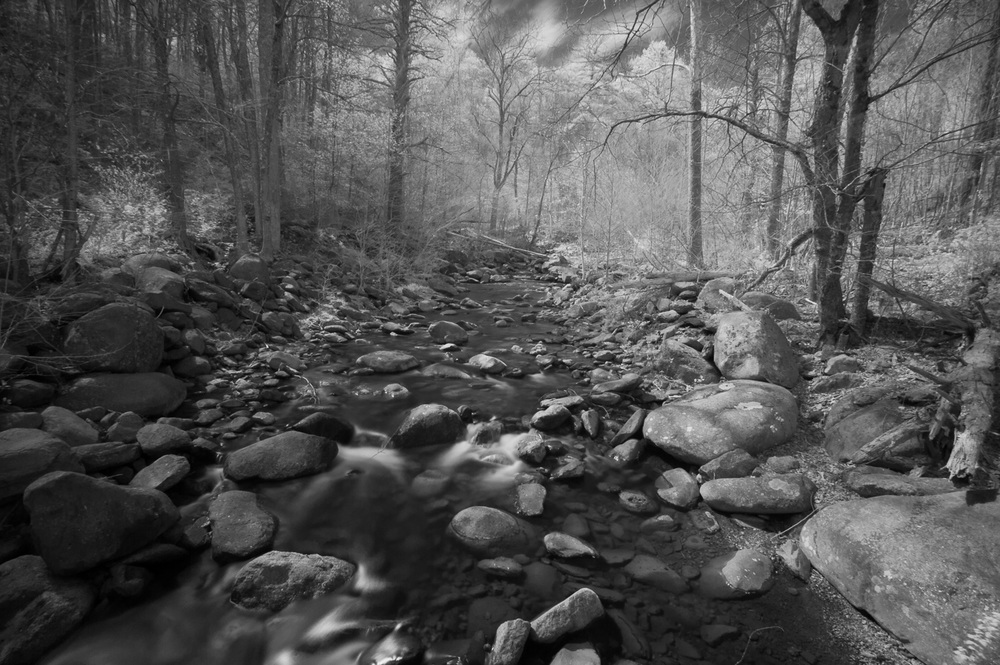The Rapidan River (infrared), VA, 2013