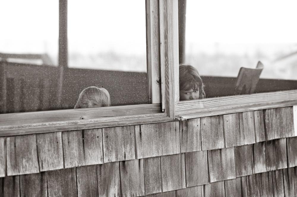 """""""Peering"""", Fenwick Island, DE"""