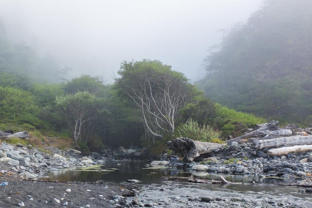 trails-16.jpg