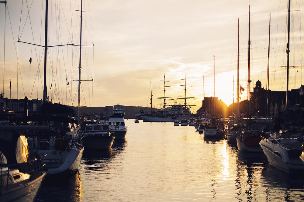 Cocoon_Cooks_Bergen_Norway_47