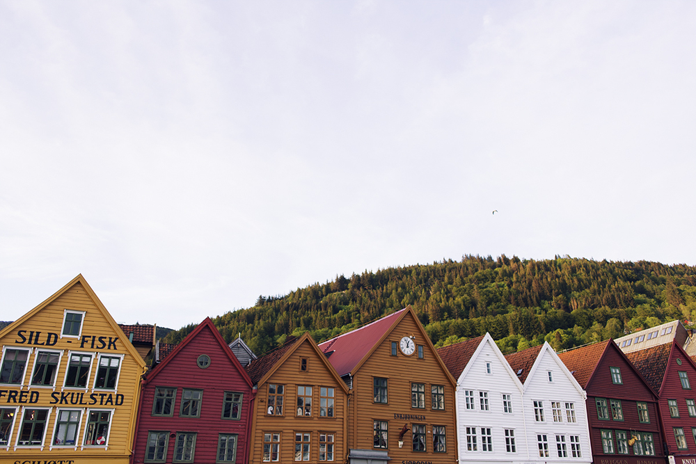 Cocoon_Cooks_Bergen_Norway_39