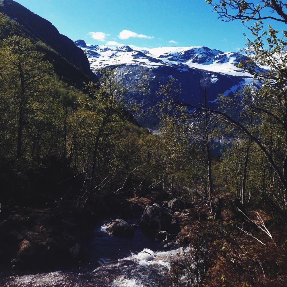 Cocoon_Cooks_Trolltunga_Norway_1