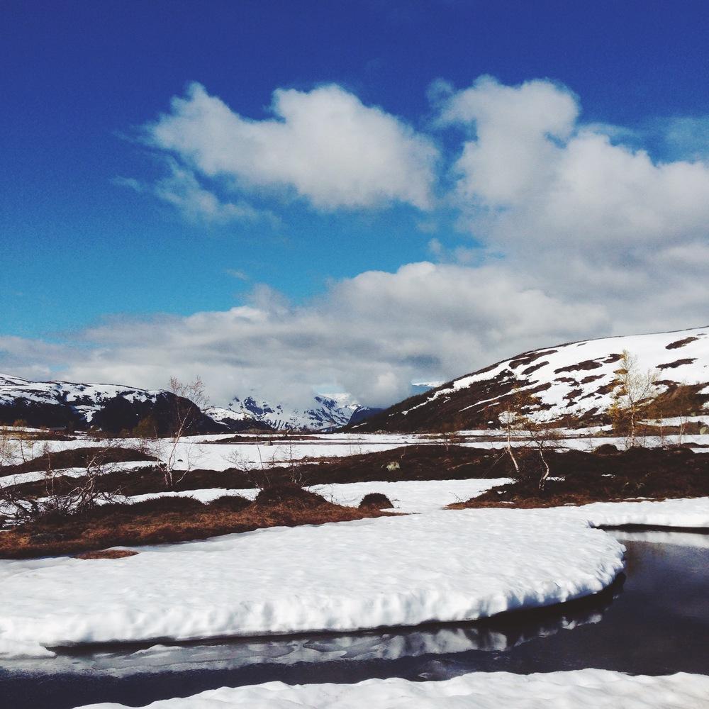 Cocoon_Cooks_Trolltunga_Norway_7