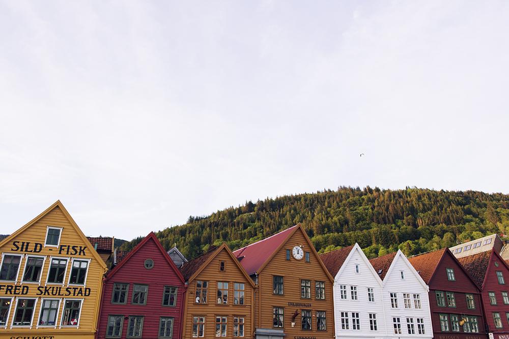 Cocoon_Cooks_Bergen_Noruega_39