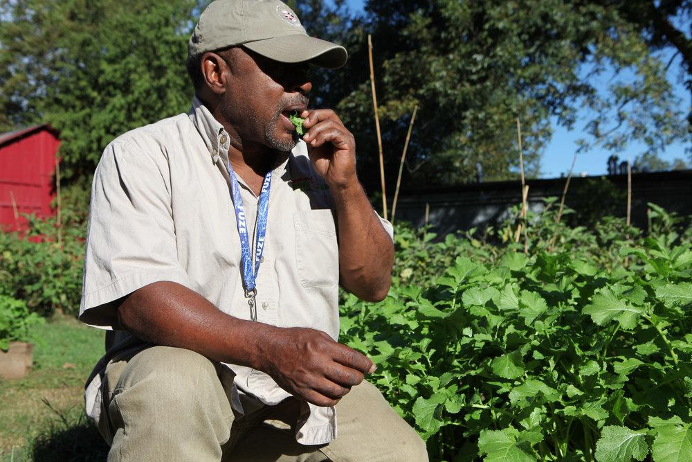 Metro Atlanta Urban Farm's Bobby Wilson gets a taste of spicy mustard greens.