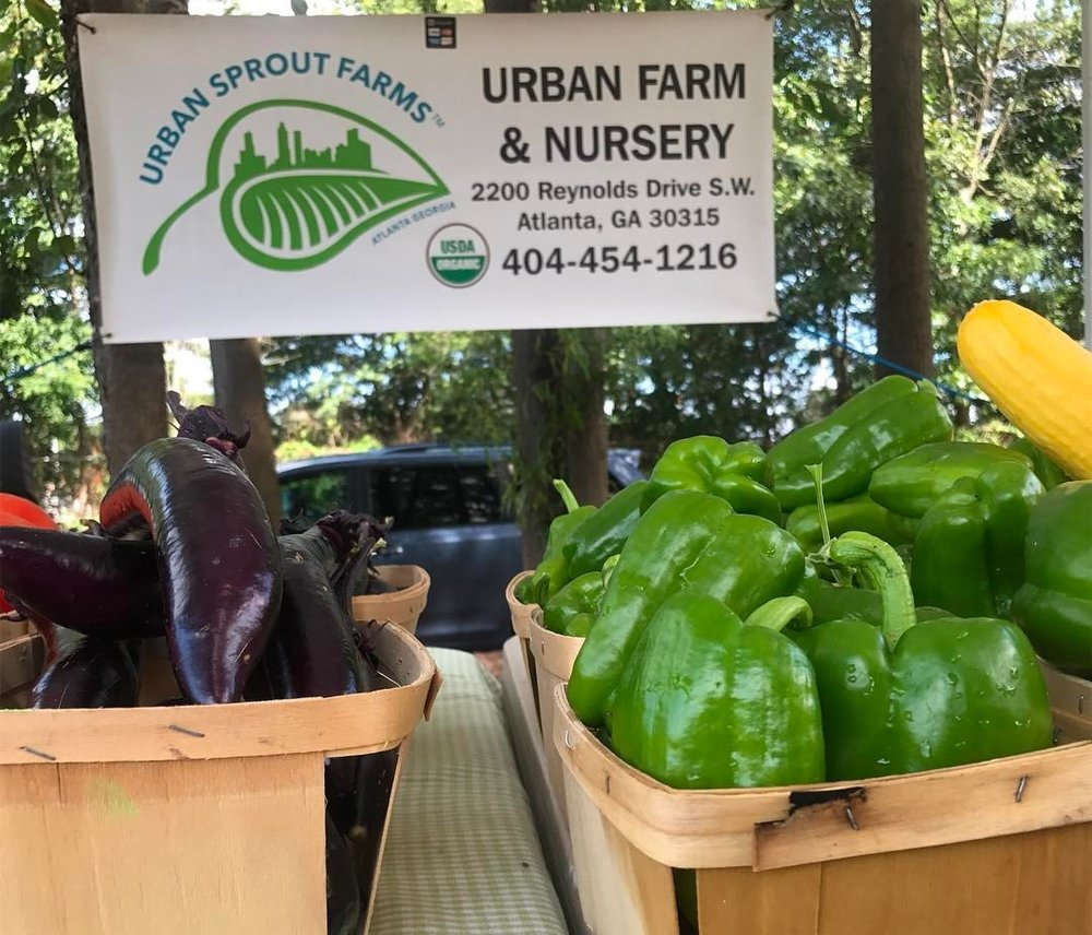 Urban Sprout Farms is home to a year-round, on-site farmers market (fresh produced at the farmers market shown above).