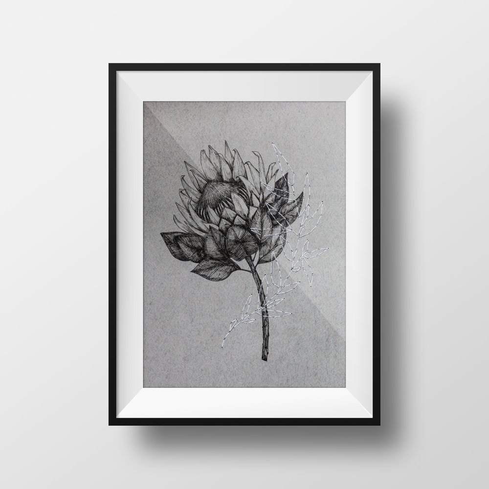 PROTEA pen & ink drawing with hand stitching $75.00