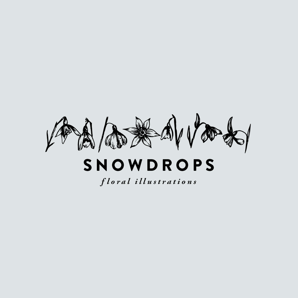 SNOWDROPS hand-illustrated florals $7.00