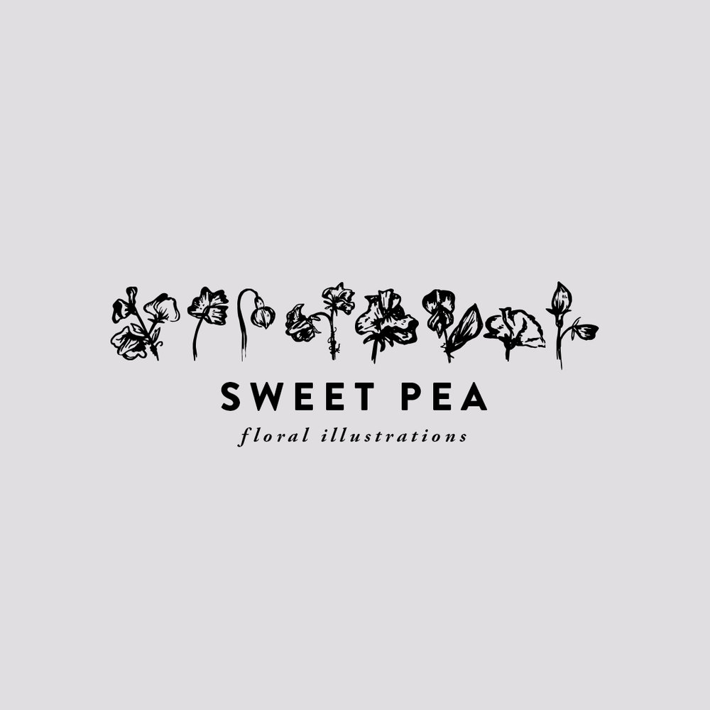 SWEET PEA hand-illustrated florals $8.00