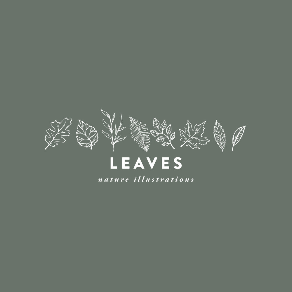 LEAVES hand-illustrated nature $8.00