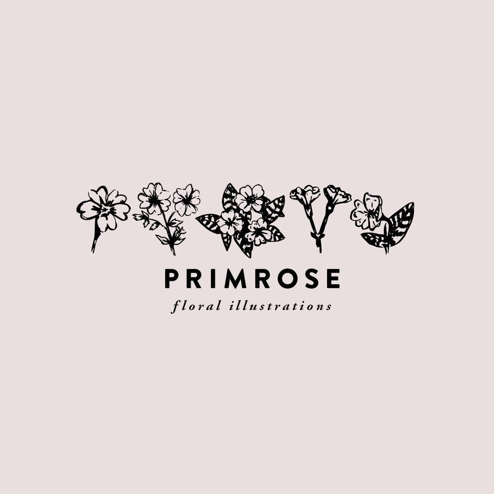 PRIMROSE hand-illustrated florals $5.00