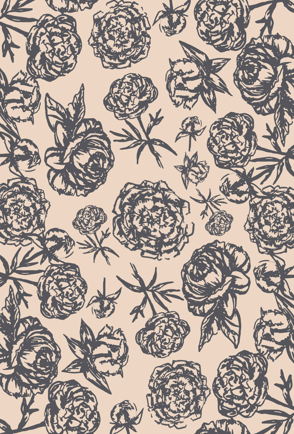 Peony Phone Wallpaper by Britt Fabello