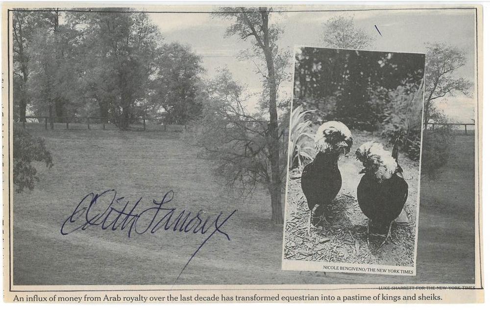 25 Lanoux Birds.jpg