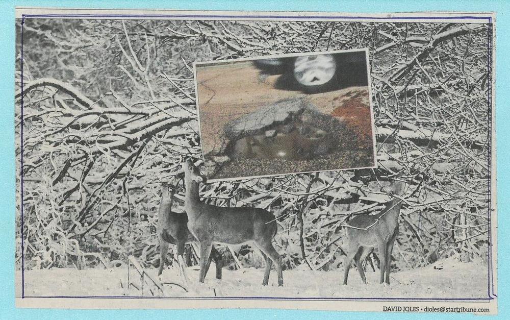 96 deer hole.jpg