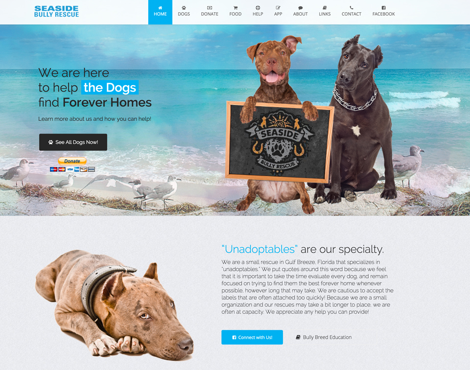 www.seasideanimalrescue.com