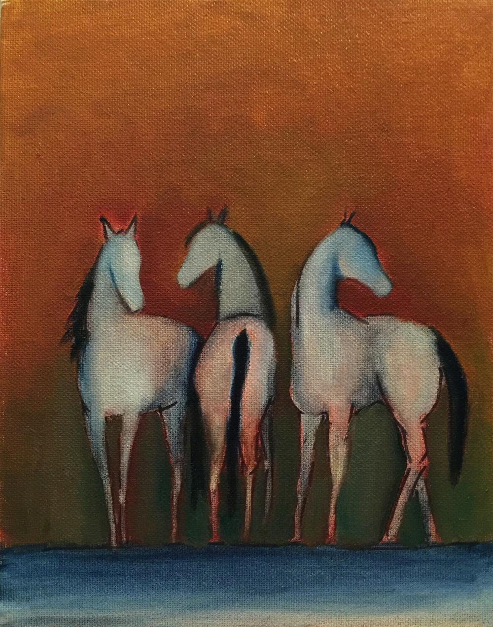 testhorses.jpg