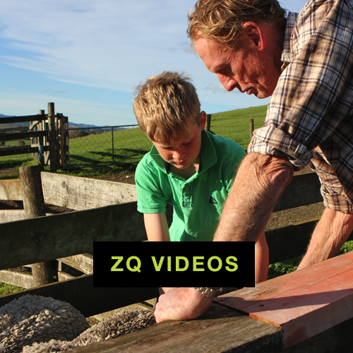 ZQvideos.jpg
