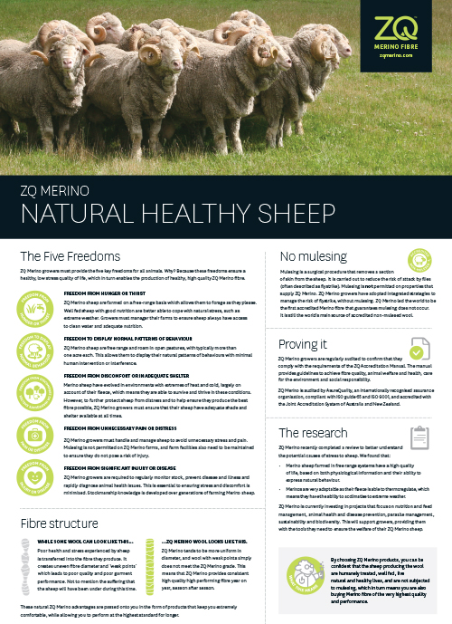 By choosing ZQ Merino products, you can be confident that the sheep producing the wool are humanely treated, well fed, and live natural and healthy lives.