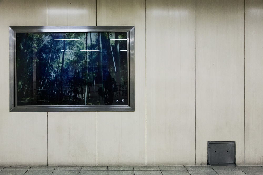 subway forest