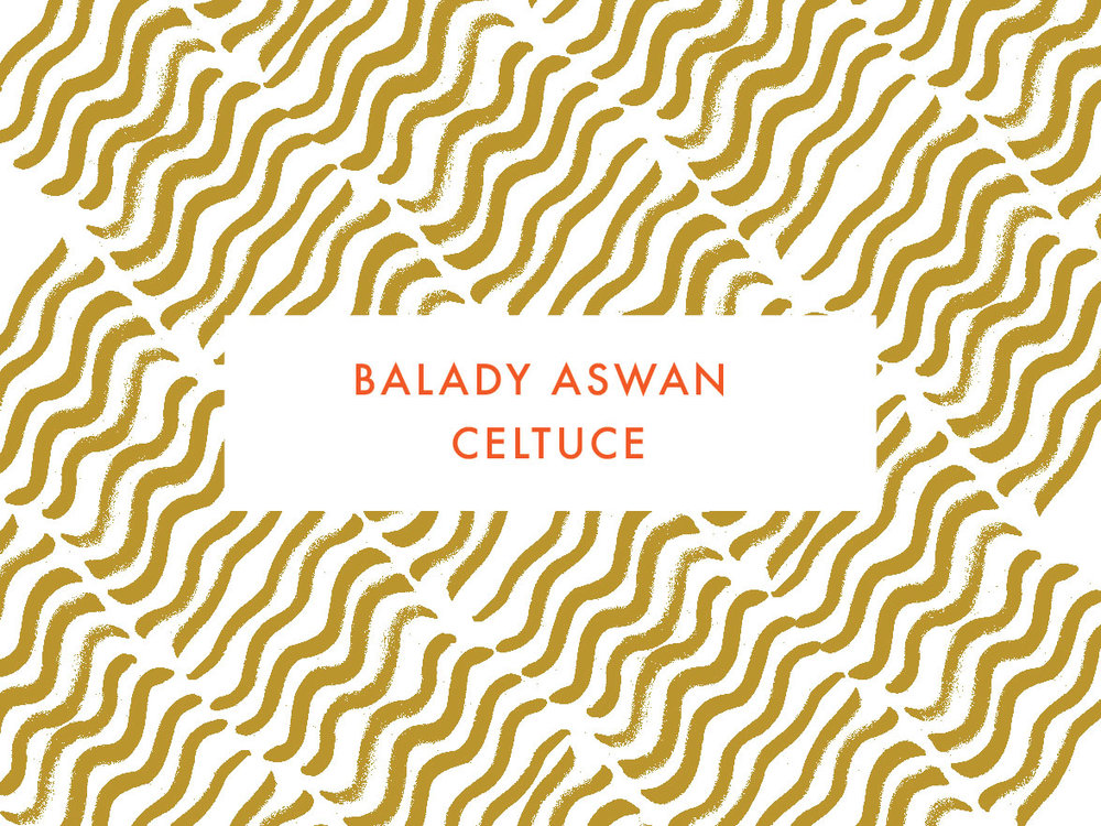 Balady Aswan Celtuce