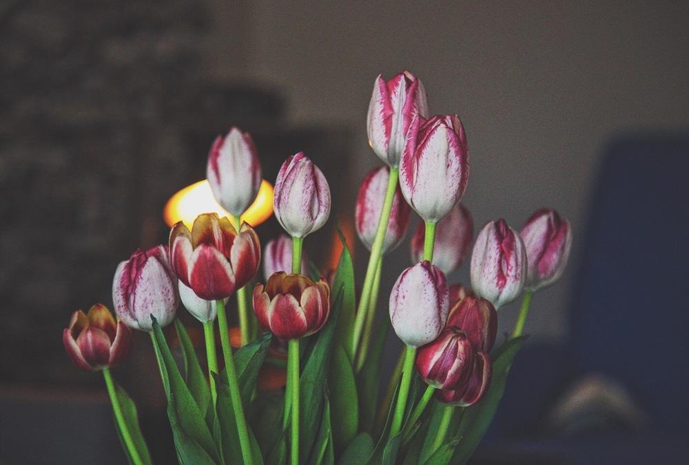 levityflowers