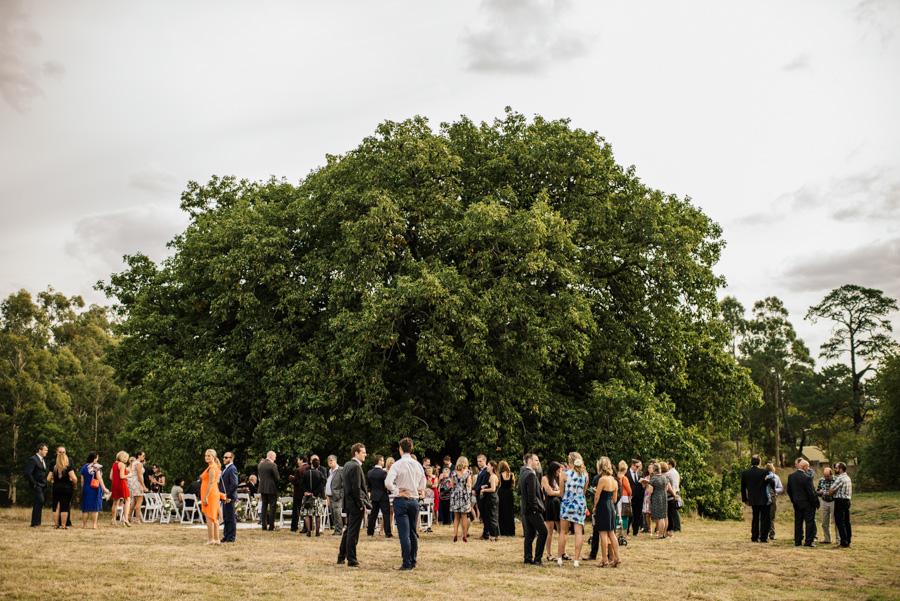 Fiona + Rhys Healesville Wedding L-47.jpg