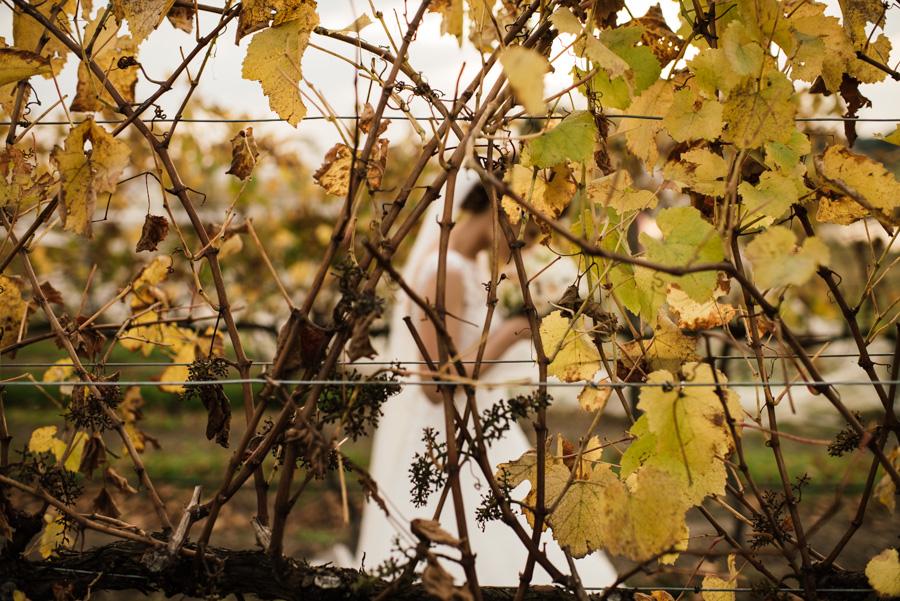Fiona + Rhys Healesville Wedding L-96.jpg