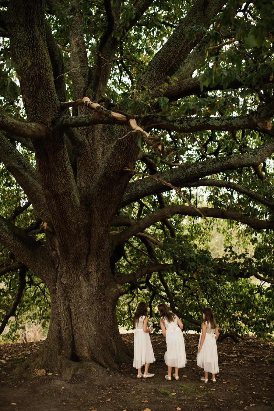 Fiona + Rhys Healesville Wedding P-7.jpg