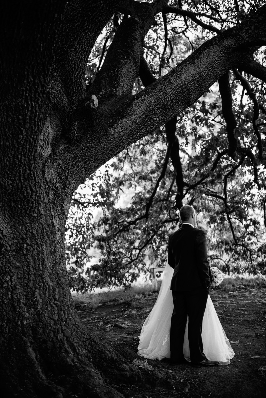 Fiona + Rhys Healesville Wedding P-8.jpg