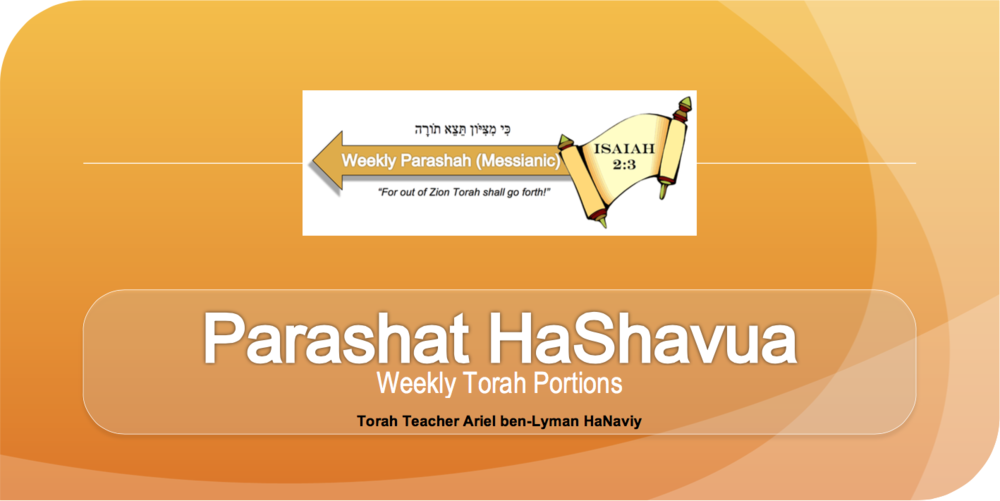 Click on this large banner to access the complete archive list of Weekly Torah commentaries