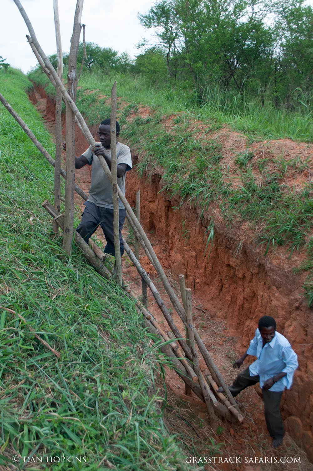 Accessing the trench on a homemade ladder. The park boundary is on the right side.