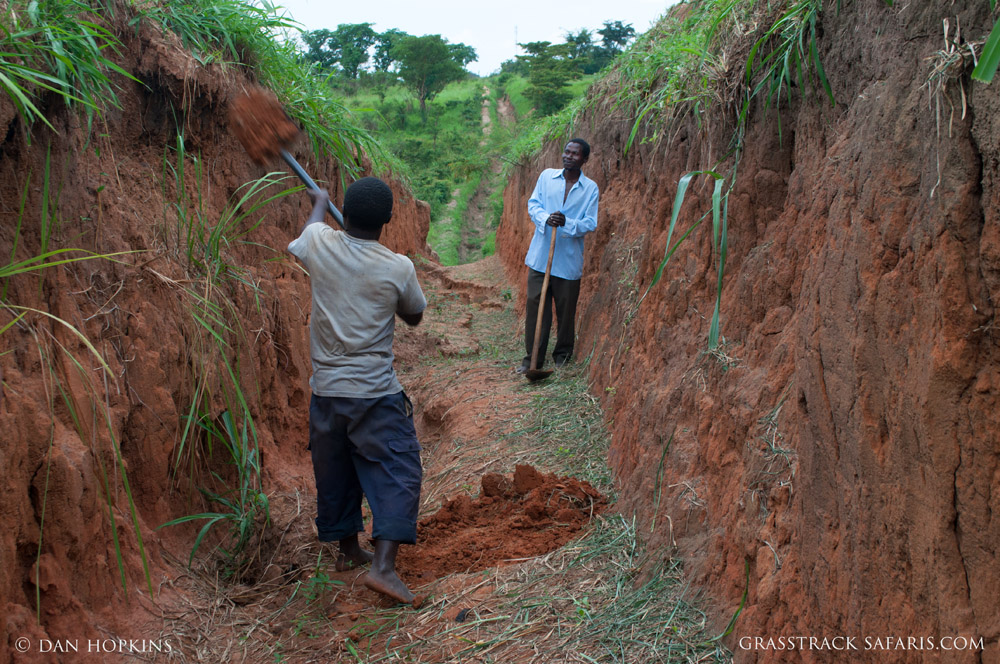 The elephant trench runs for 12 miles along the border of Queen Elizabeth National Park. Constructed by hand, the trench requires constant work to maintain a width and depth of 6 feet.