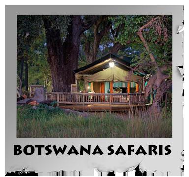 botswana safaris.png