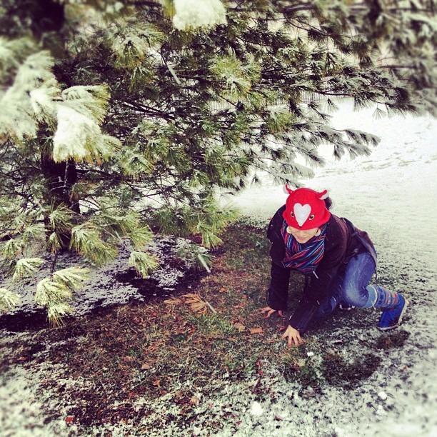 #found a #fox #hat #having #fun in the #snow #playingaround #snowfight