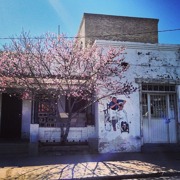 #spring #time #haircut #trim your #bush #central #chucotown #handpainted #signage #barbershop
