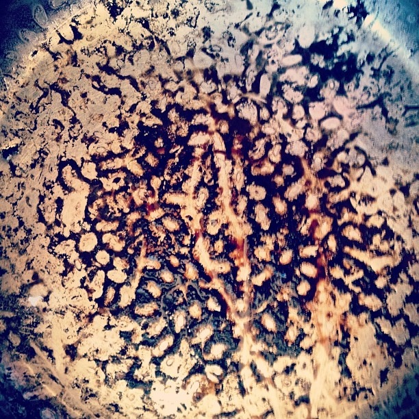 #honeyIburntthebeans #goingouttolunch #eye #yoni #brown #embryonic #egg #visions