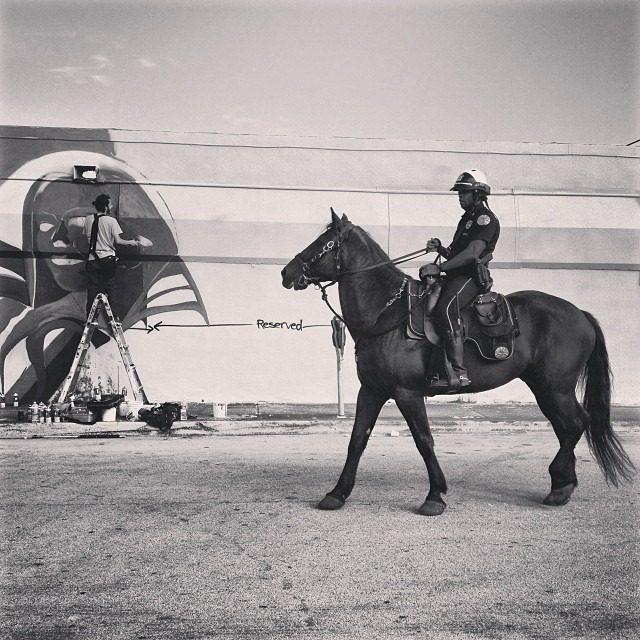 #horse #action #urban #nature #streetphotography #miamiartbasel #local #love #blackandwhite #WERC #wercking @w3rc