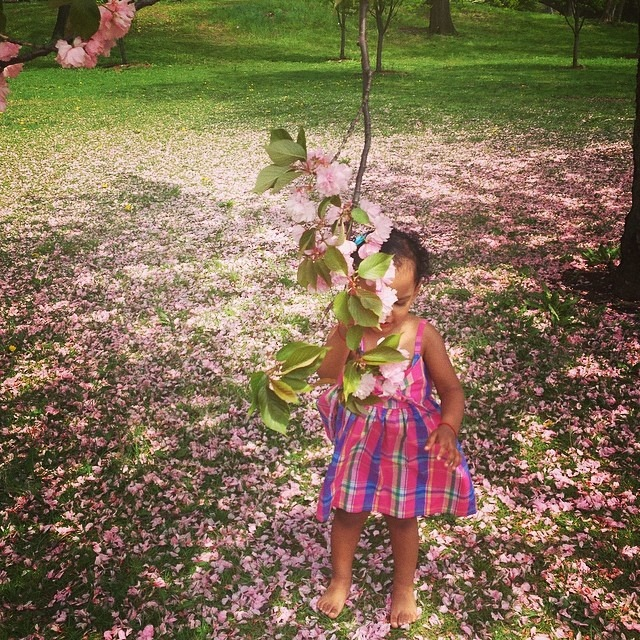 #spring #sprung #children #photoshoot #cherryblossom #love #pink #girl #park