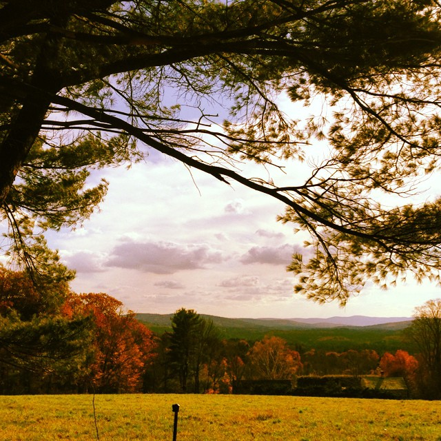 #classic #fall in the #eastcoast #orange #love #greatbarrington #Massachusetts #getaway