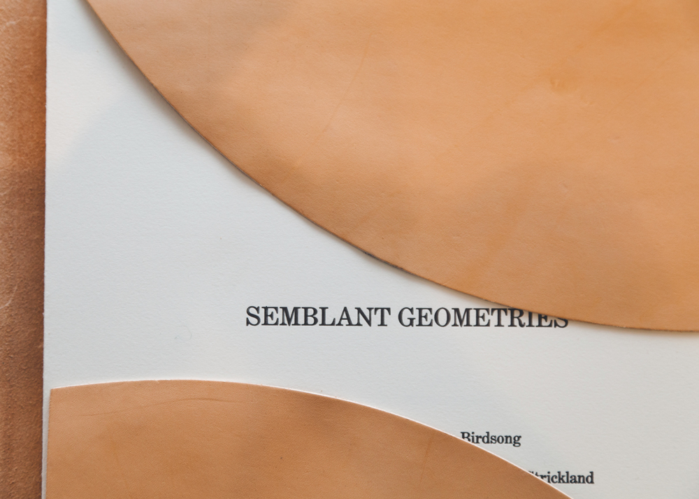 Semblant Geometries , 2014. Detail of cover page, half-opened.