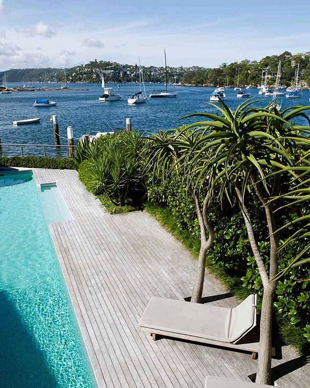 • Aloe Barberae Pool Side Plants featured at this magnificent Mosman Residence by @williamdangar, one of Sydney's premier landscape designers •