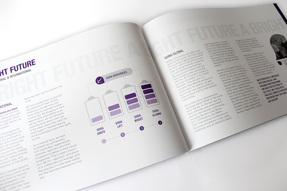 soda_inc_annual_report_p18A.jpg
