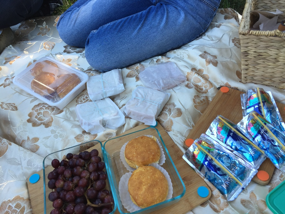 Picnic Basket Essentials