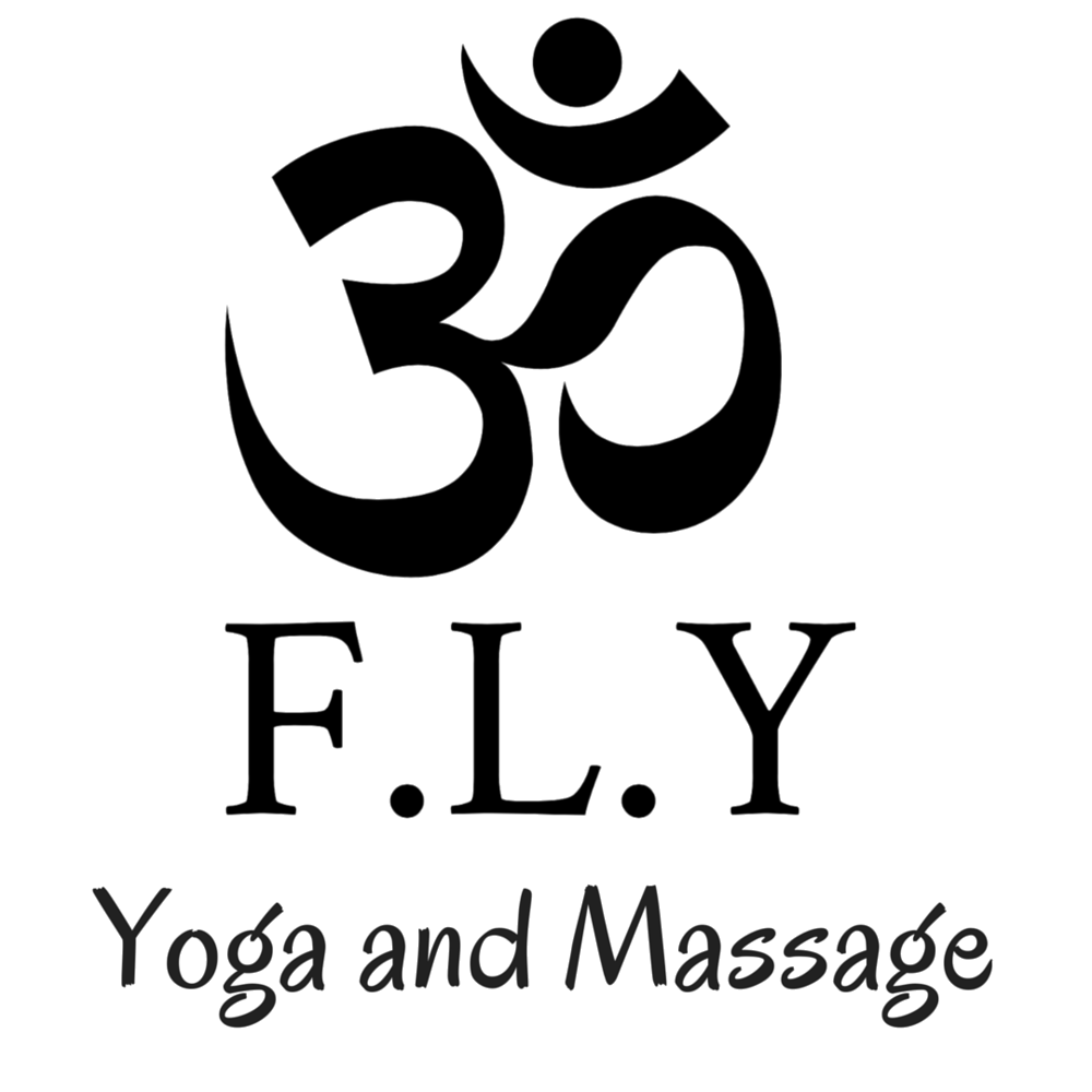 FLY Y&M Logo.png