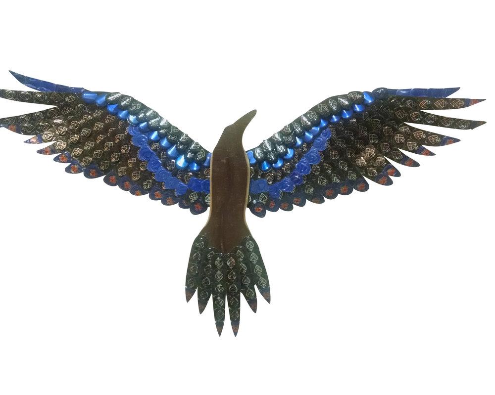 Birds - Raven 1.jpg